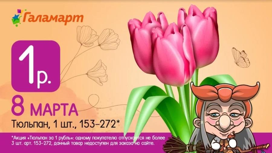 Тюльпаны по 1 рублю