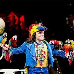 шоу в самарском цирке