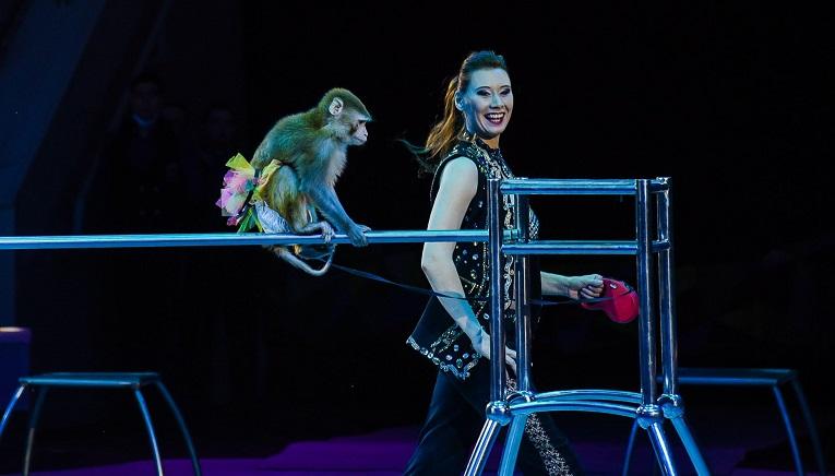 жирав шоу самара цирк